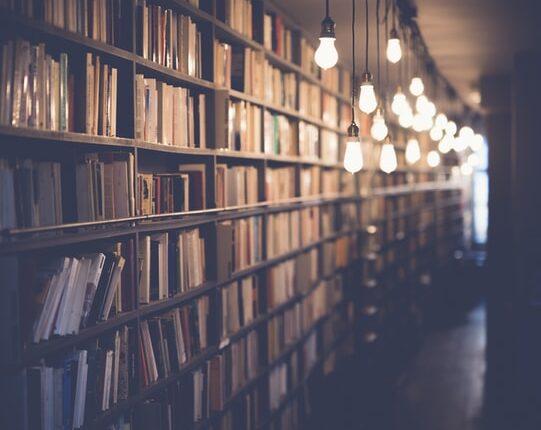 Étagère remplie de livres